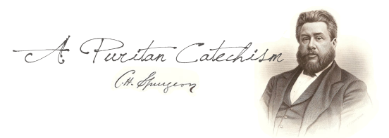 A-Puritan-Catechism-Graphic